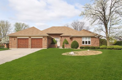 304 Waterford Drive, Prospect Heights, IL 60070 - MLS#: 09797430