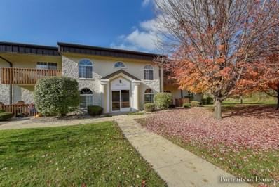 1353 Mesa Drive UNIT 1353, Joliet, IL 60435 - MLS#: 09798189
