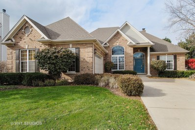 607 Greenfield Turn, Yorkville, IL 60560 - MLS#: 09799043
