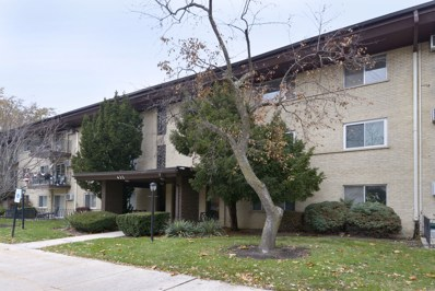 435 S Cleveland Avenue UNIT 305, Arlington Heights, IL 60005 - MLS#: 09800682