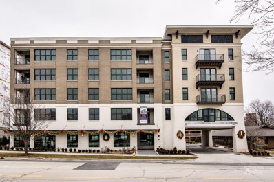 940 MAPLE Avenue UNIT 509, Downers Grove, IL 60515 - MLS#: 09800877