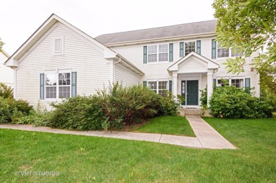 8047 Cripple Creek Drive, Long Grove, IL 60047 - MLS#: 09802110