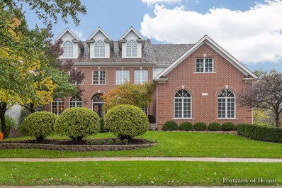 111 SETTLERS Drive, Naperville, IL 60565 - MLS#: 09803371