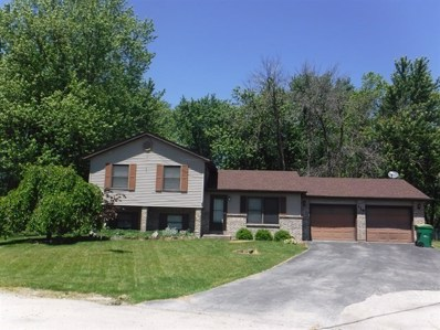 128 N Countryside Court, Braidwood, IL 60408 - MLS#: 09803478