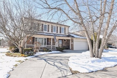 6718 Meade Place, Downers Grove, IL 60516 - MLS#: 09804123