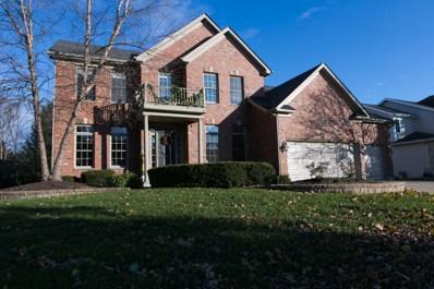 16011 Hometown Drive, Plainfield, IL 60586 - #: 09804373