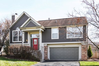 1757 Somerfield Lane, Crystal Lake, IL 60014 - #: 09804940