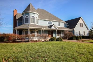 15923 S Renwick Park Drive, Plainfield, IL 60586 - #: 09805076
