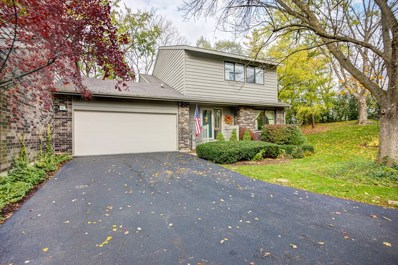 16 Brook Lane, Palos Park, IL 60464 - #: 09805225