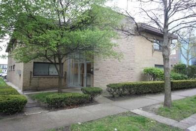 257 Washington Boulevard UNIT 5, Oak Park, IL 60302 - MLS#: 09805366