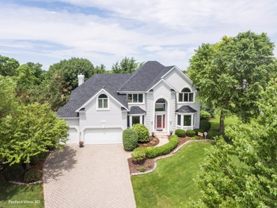 4619 CLEARWATER Lane, Naperville, IL 60564 - MLS#: 09805566
