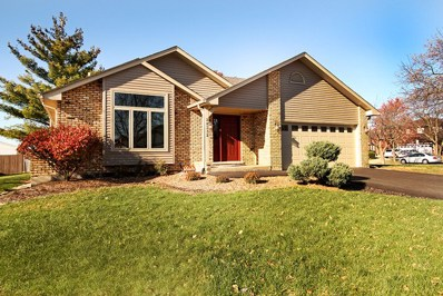 20332 S White Fence Court, Frankfort, IL 60423 - MLS#: 09806539
