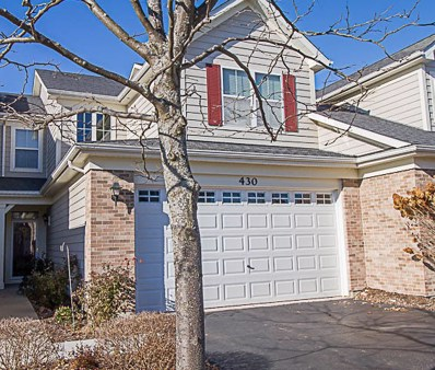 430 Tiverton Street UNIT 0, Elgin, IL 60124 - MLS#: 09806613