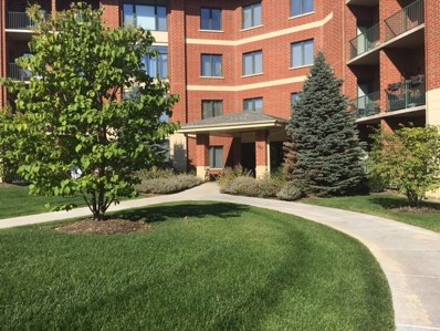 845 E 22nd Street UNIT 113, Lombard, IL 60148 - MLS#: 09807799