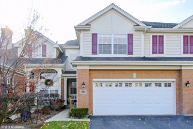 919 Winners Cup Court, Naperville, IL 60565 - MLS#: 09808557