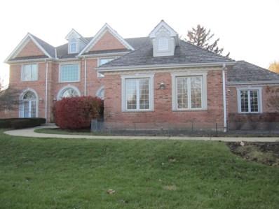 20522 N Amherst Lane, Deer Park, IL 60010 - MLS#: 09808699