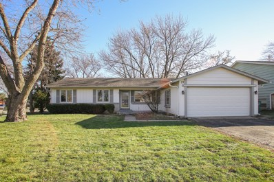 21 Smethwick Lane, Elk Grove Village, IL 60007 - #: 09809164