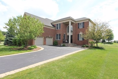 26 Championship Parkway, Hawthorn Woods, IL 60047 - #: 09809710