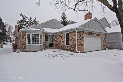 12 THE COURT OF HIDDEN WELLS, Northbrook, IL 60062 - #: 09810015
