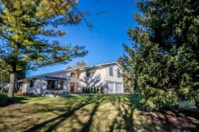 32038 N Pine Avenue, Grayslake, IL 60030 - MLS#: 09810204