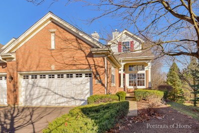 933 Winners Cup Court, Naperville, IL 60565 - MLS#: 09810565