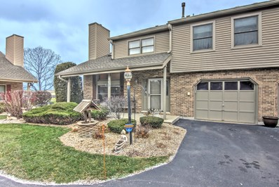 9346 Waterford Lane, Orland Park, IL 60462 - MLS#: 09810617