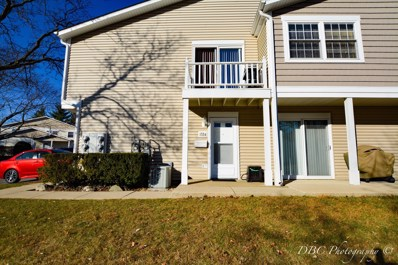 1324 BRAVER Court UNIT 100D, Wheeling, IL 60090 - MLS#: 09811045