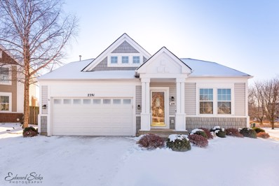 2391 Stanton Circle, Lake In The Hills, IL 60156 - #: 09811309