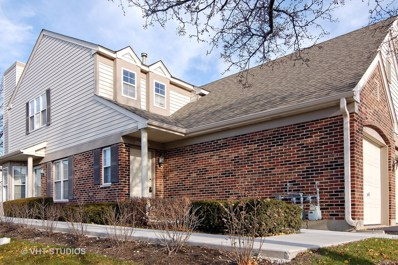 1750 AUTUMN Avenue UNIT D, Schaumburg, IL 60193 - MLS#: 09812914