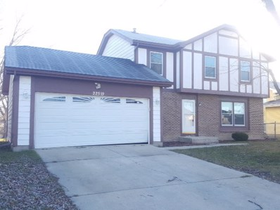 22519 CLARENDON Avenue, Richton Park, IL 60471 - MLS#: 09813437