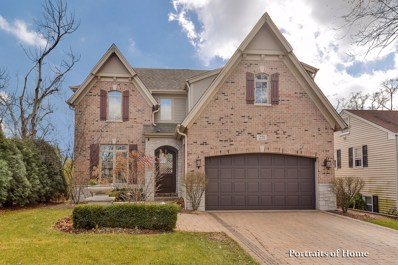 271 Hillside Avenue, Glen Ellyn, IL 60137 - MLS#: 09813668