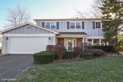 535 Burr Oak Drive, Lake Zurich, IL 60047 - #: 09815584