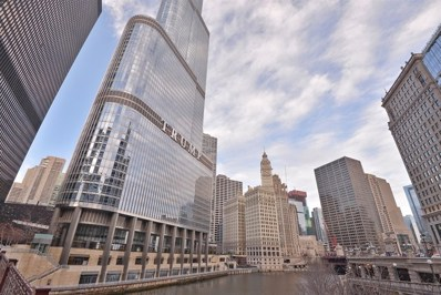 401 N Wabash Avenue UNIT P171D, Chicago, IL 60611 - #: 09816556