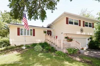 157 Kainer Avenue, Barrington, IL 60010 - MLS#: 09816588