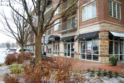 100 S Emerson Street UNIT 515, Mount Prospect, IL 60056 - MLS#: 09817237