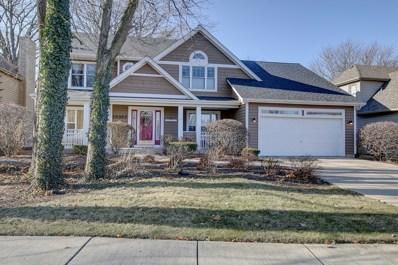 15352 Dan Patch Drive, Plainfield, IL 60544 - MLS#: 09817263