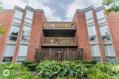 2036 N LARRABEE Street UNIT 8201, Chicago, IL 60614 - MLS#: 09817421