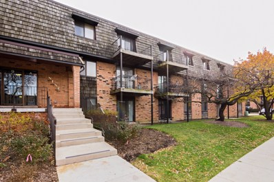 9 Oak Creek Drive UNIT 3903, Buffalo Grove, IL 60089 - MLS#: 09817582