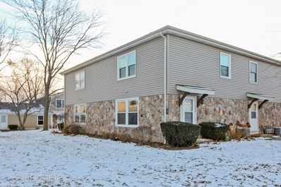 225 Winfield Court, Vernon Hills, IL 60061 - MLS#: 09819186