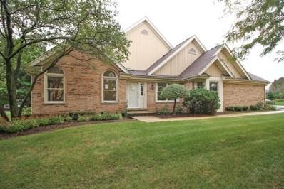 14451 Morningside Road, Orland Park, IL 60462 - #: 09819866