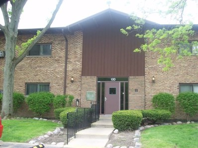 100 WILLOW Lane UNIT 106, Willow Springs, IL 60480 - MLS#: 09822410