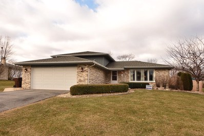 20428 S Cobble Stone Court, Frankfort, IL 60423 - MLS#: 09822414