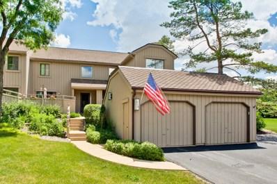 513 Old Barn Road, Lake Barrington, IL 60010 - MLS#: 09823550