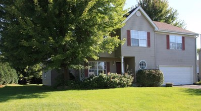 2513 W Farmington Court, Belvidere, IL 61008 - #: 09825077