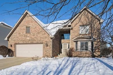 2119 Snow Creek Road, Naperville, IL 60564 - MLS#: 09825717