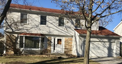4 Mayflower Road, Vernon Hills, IL 60061 - MLS#: 09825807