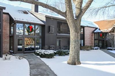 740 Saint Andrews Lane UNIT 29, Crystal Lake, IL 60014 - #: 09826711