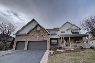 12836 Scoter Court, Plainfield, IL 60585 - #: 09827448