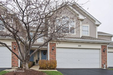 289 Wildspring Court UNIT 289, Itasca, IL 60143 - #: 09827797