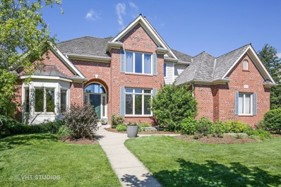 662 Waters Edge Drive, South Elgin, IL 60177 - #: 09829331